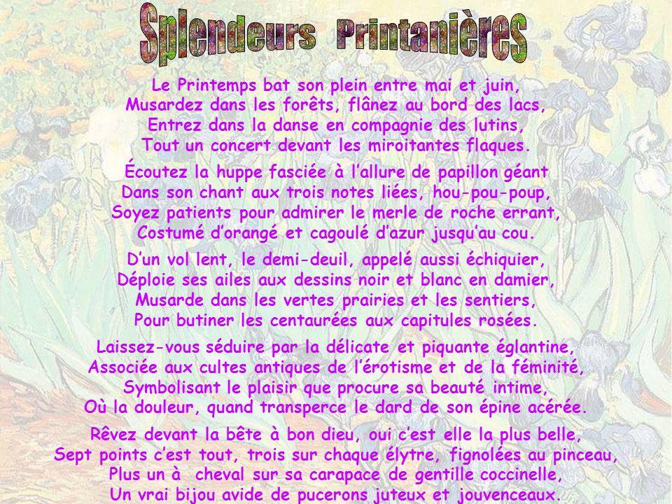 Le Pont japonais de Giverny chez Claude Monet Au Clic