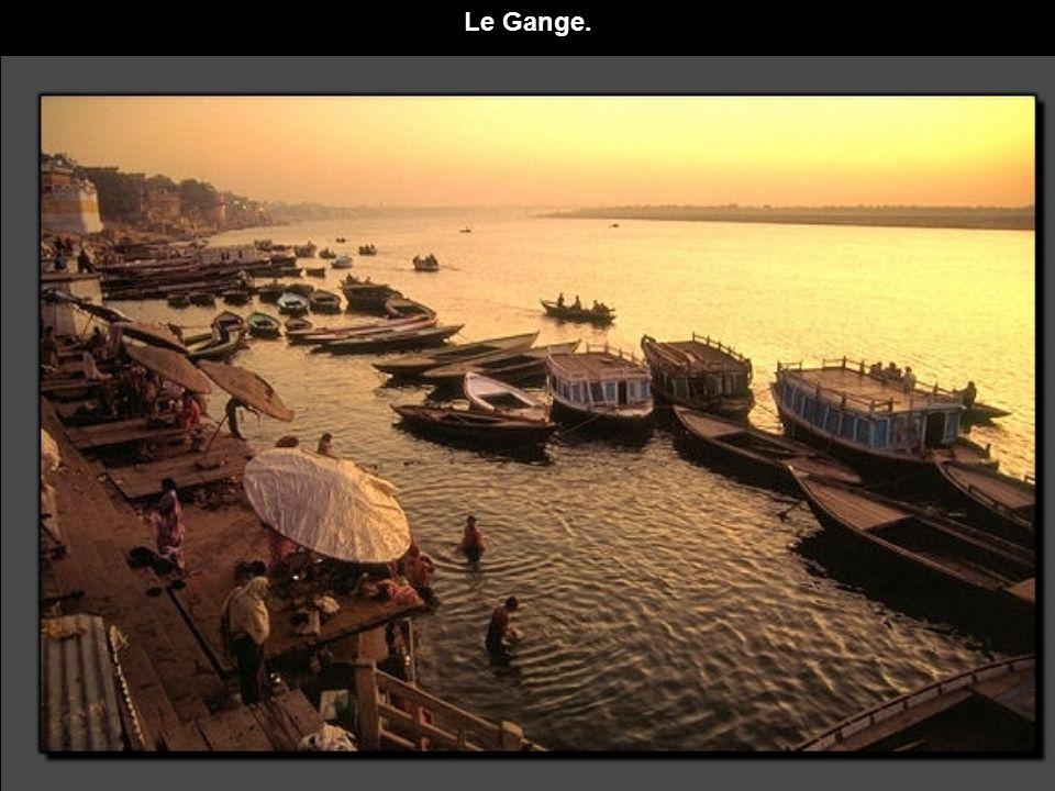 Le Gange.