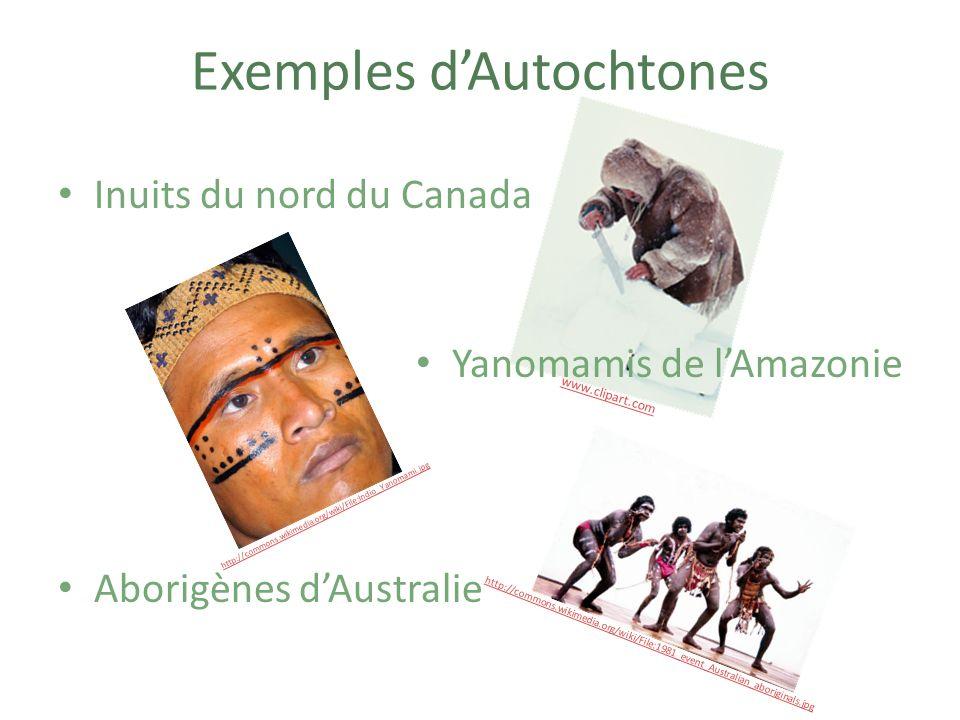 LA TRANSFORMATION DU BOIS EN AMAZONIE