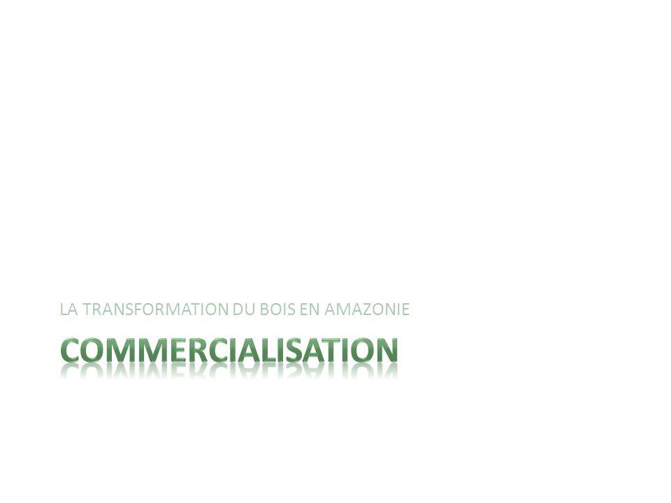 Action de mettre en vente des produits. Définition de commercialisation