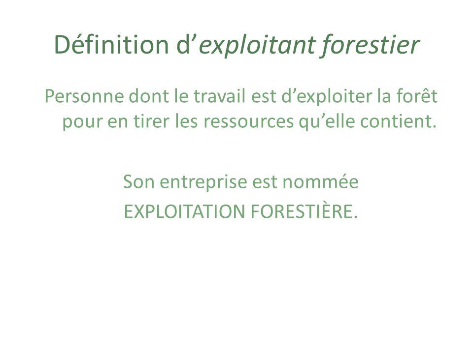 Exemples de façons dexploiter la forêt Couper des arbres Panter des arbres pour les couper plus tard (= reboisement)