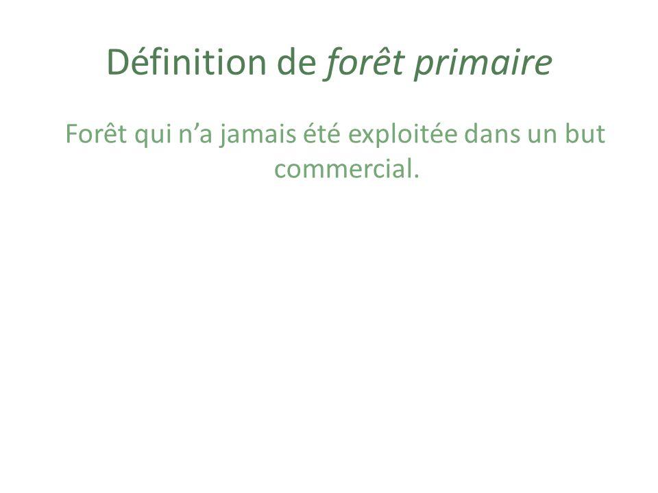 Exemple de forêt primaire http://www.biodivcanada.ca/default.asp?lang=Fr&n=62437FA8-1&offset=3&toc=show
