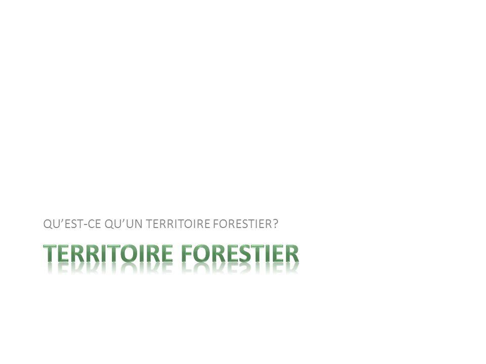Définition de territoire forestier Peuplement darbres assez dense + plantes, animaux,micro- organismes...