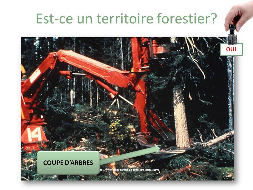 Est-ce un territoire forestier.