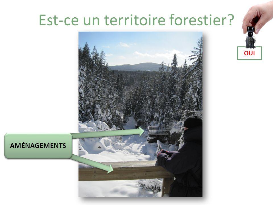 Est-ce un territoire forestier? AMÉNAGEMENTS OUI