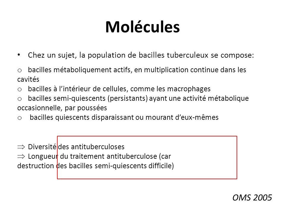 Molécules Chez un sujet, la population de bacilles tuberculeux se compose: o bacilles métaboliquement actifs, en multiplication continue dans les cavités o bacilles à lintérieur de cellules, comme les macrophages o bacilles semi-quiescents (persistants) ayant une activité métabolique occasionnelle, par poussées o bacilles quiescents disparaissant ou mourant deux-mêmes Diversité des antituberculoses Longueur du traitement antituberculose (car destruction des bacilles semi-quiescents difficile) OMS 2005