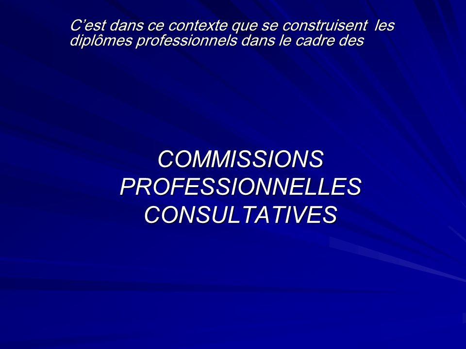 COMMISSIONS PROFESSIONNELLES CONSULTATIVES Cest dans ce contexte que se construisent les diplômes professionnels dans le cadre des