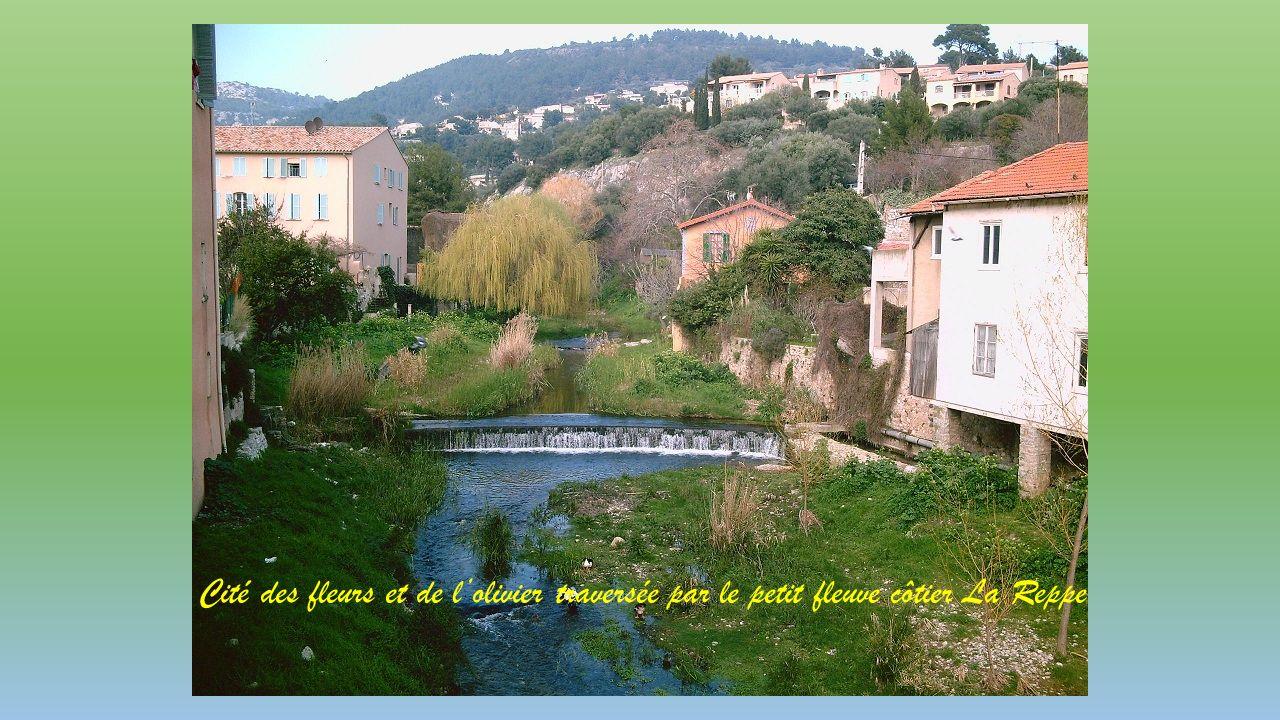 Cité des fleurs et de lolivier traversée par le petit fleuve côtier La Reppe