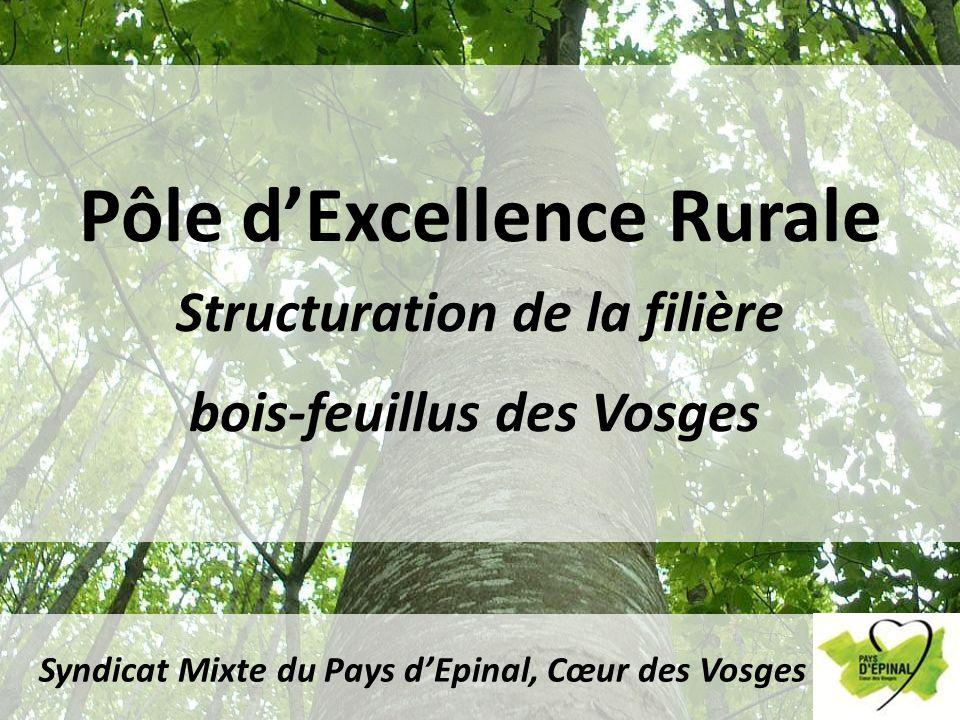 Pôle dExcellence Rurale Structuration de la filière bois-feuillus des Vosges Syndicat Mixte du Pays dEpinal, Cœur des Vosges