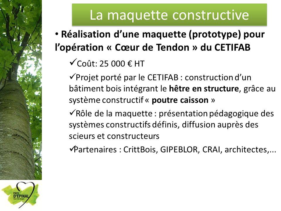 La maquette constructive Réalisation dune maquette (prototype) pour lopération « Cœur de Tendon » du CETIFAB Coût: 25 000 HT Projet porté par le CETIF