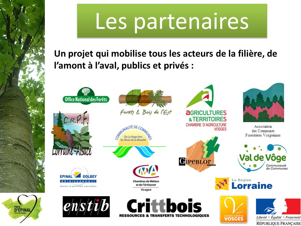 Les partenaires Un projet qui mobilise tous les acteurs de la filière, de lamont à laval, publics et privés : Association des Communes Forestières Vos