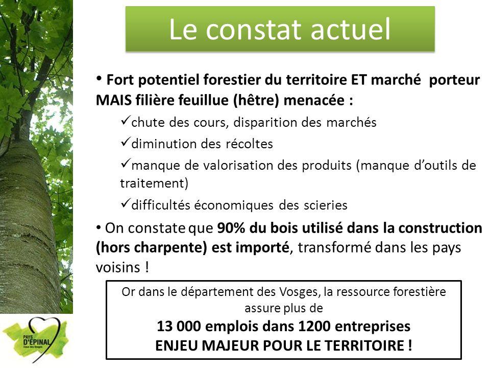 Le constat actuel Fort potentiel forestier du territoire ET marché porteur MAIS filière feuillue (hêtre) menacée : chute des cours, disparition des ma