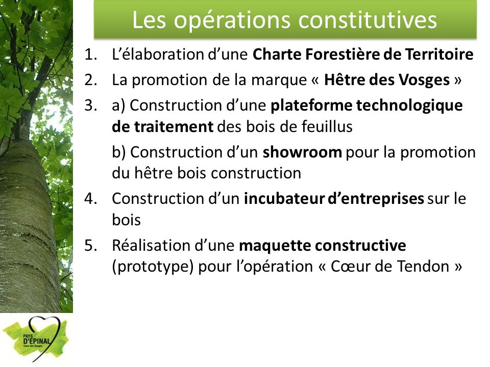 Les opérations constitutives 1.Lélaboration dune Charte Forestière de Territoire 2.La promotion de la marque « Hêtre des Vosges » 3.a) Construction du