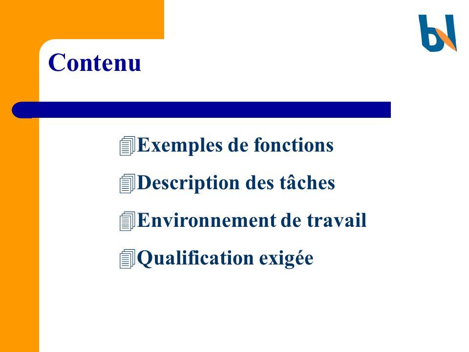Contenu Exemples de fonctions Description des tâches Environnement de travail Qualification exigée