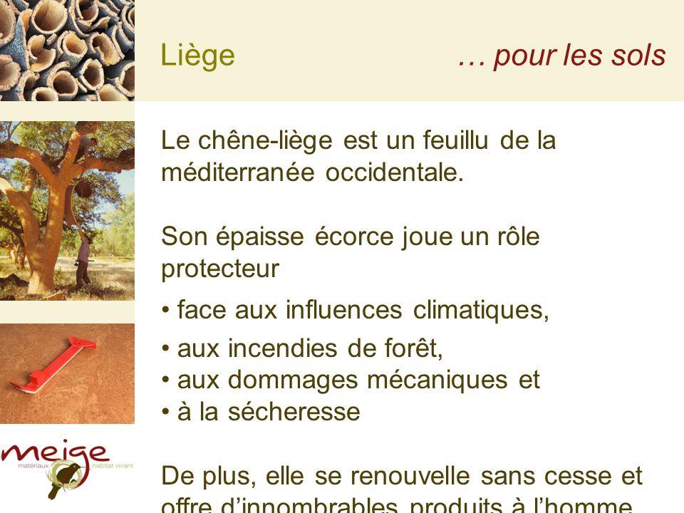 Liège… pour les sols Le chêne-liège est un feuillu de la méditerranée occidentale. Son épaisse écorce joue un rôle protecteur face aux influences clim