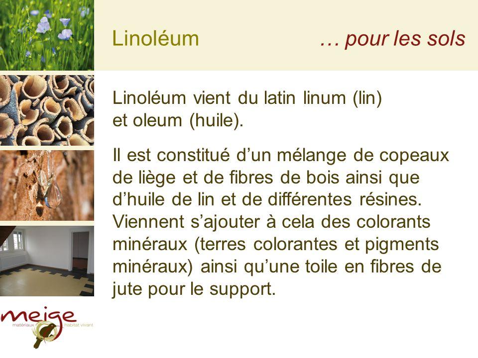 Linoléum… pour les sols Linoléum vient du latin linum (lin) et oleum (huile). Il est constitué dun mélange de copeaux de liège et de fibres de bois ai