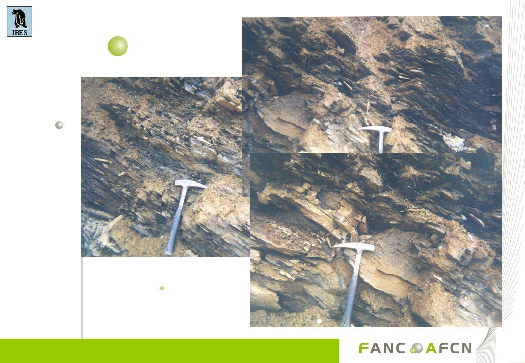 Le Radon dans le sous-sol Situation dans les Ardennes (80 Bq/m³)Situation au nord de la Meuse (30 Bq/m³) Les matières naturelles radioactives sont présentes partout dans lécorce terrestre Présent dans toutes les roches, et tous les sols, et dans les matériaux de construction, en quantités variables Apparaît en raison de la désintégration radioactive de luranium-238 Dépend de lorigine de la roche Les roches granitiques et schisteuses contiennent plus d U Les roches sédimentaires et les sédiments meubles contiennent moins de radionuclides