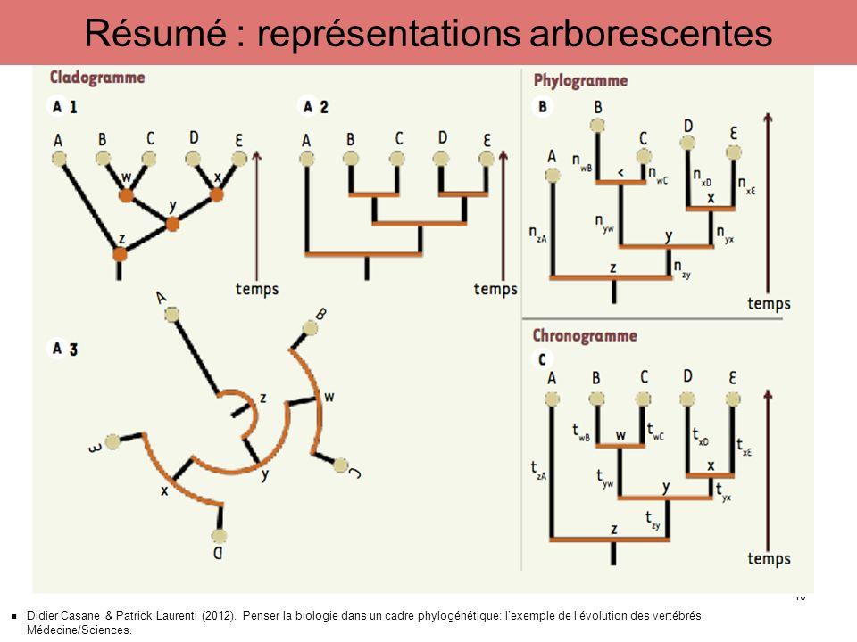 Didier Casane & Patrick Laurenti (2012). Penser la biologie dans un cadre phylogénétique: lexemple de lévolution des vertébrés. Médecine/Sciences. 10