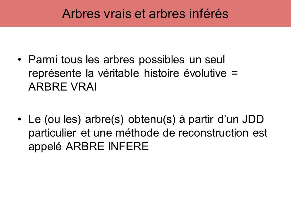 Parmi tous les arbres possibles un seul représente la véritable histoire évolutive = ARBRE VRAI Le (ou les) arbre(s) obtenu(s) à partir dun JDD partic