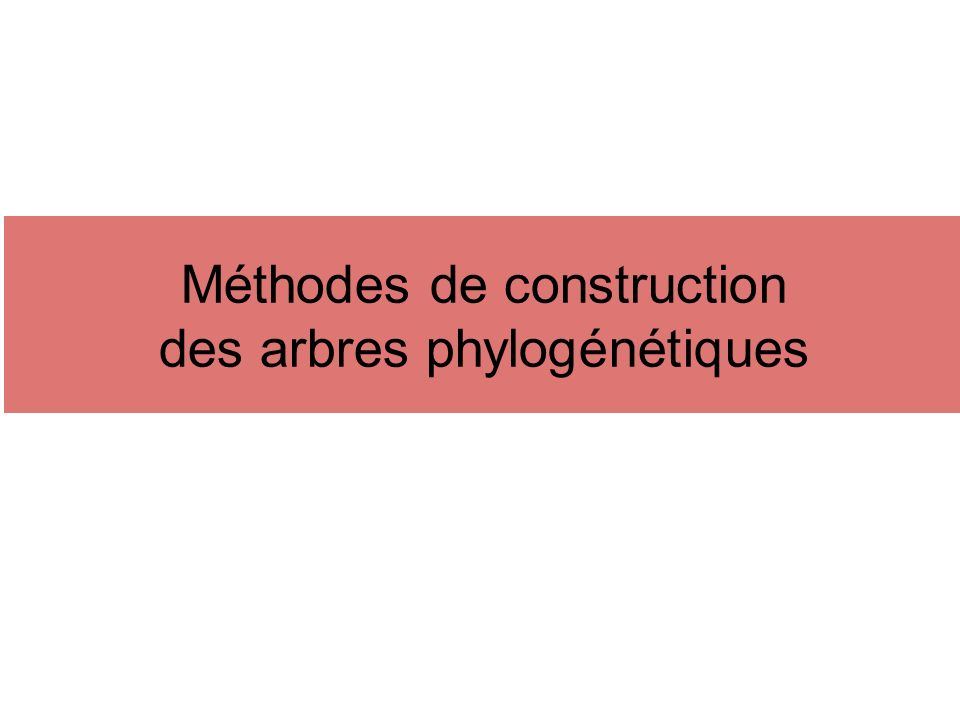 Méthodes de construction des arbres phylogénétiques