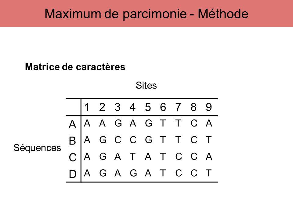 123456789 A AAGAGTTCA B AGCCGTTCT C AGATATCCA D AGAGATCCT Sites Séquences Matrice de caractères Maximum de parcimonie - Méthode