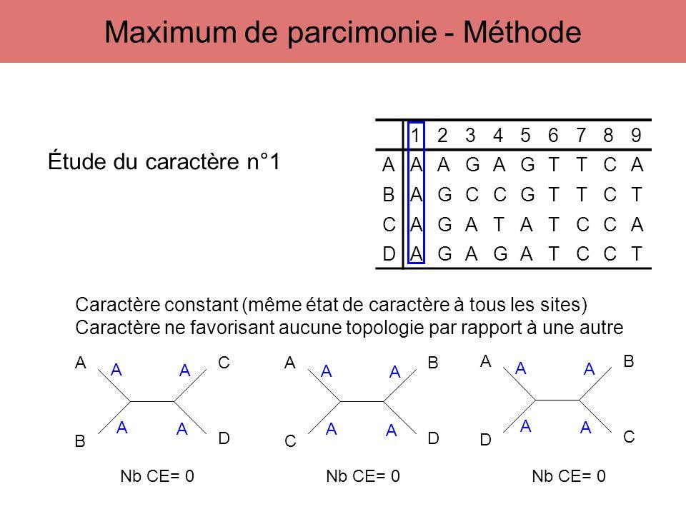123456789 AAAGAGTTCA BAGCCGTTCT CAGATATCCA DAGAGATCCT A B C D A C B D A D B C Étude du caractère n°1 A A A A A A A A A A A A Caractère constant (même