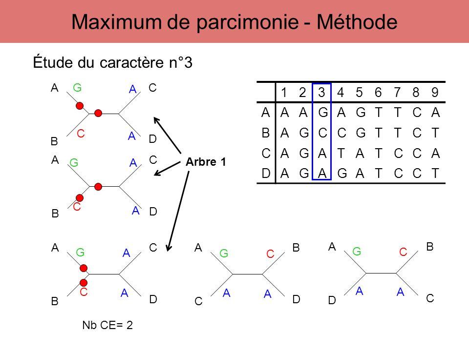 123456789 AAAGAGTTCA BAGCCGTTCT CAGATATCCA DAGAGATCCT A B C D Étude du caractère n°3 G C A A Maximum de parcimonie - Méthode A B C D A B C D G G C C A