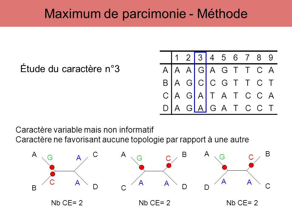 123456789 AAAGAGTTCA BAGCCGTTCT CAGATATCCA DAGAGATCCT A B C D A C B D A D B C Étude du caractère n°3 G C A A G A A C G A A C Caractère variable mais n