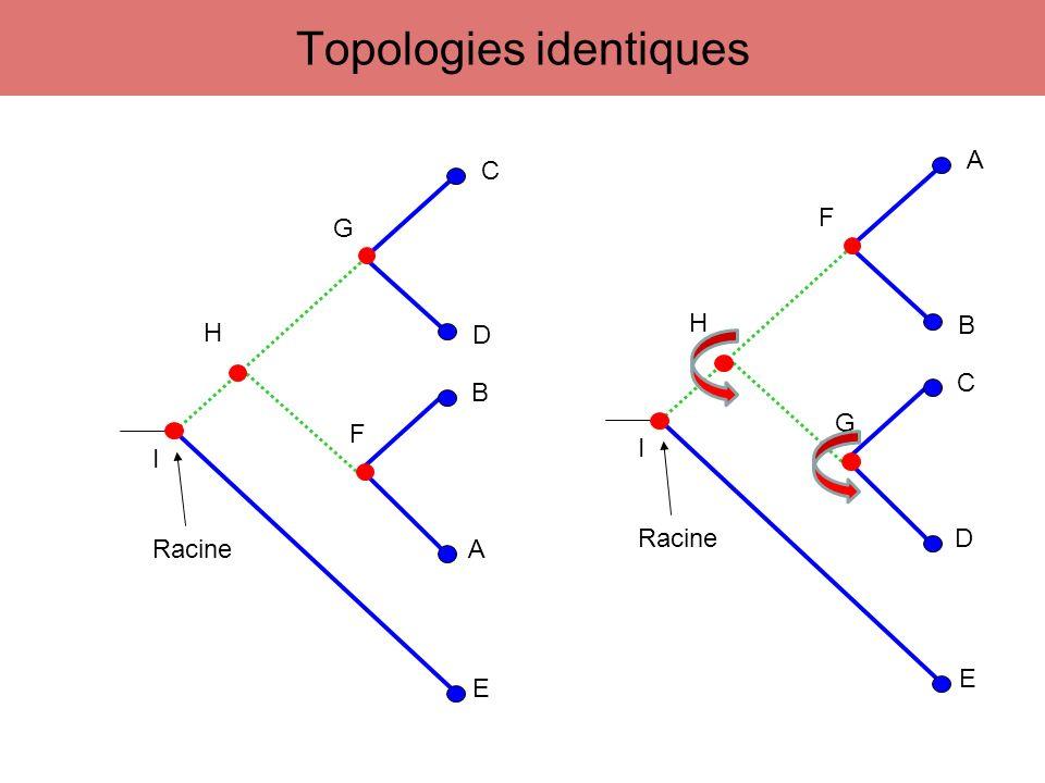 123456789 AAAGAGTTCA BAGCCGTTCT CAGATATCCA DAGAGATCCT A B C D A C B D A D B C Étude du caractère n°7 T T C C T C C T T C C T Caractère variable et informatif Caractère favorisant la première topologie par rapport aux deux autres Nb CE= 1 Nb CE= 2Nb CE= 2 Maximum de parcimonie - Méthode