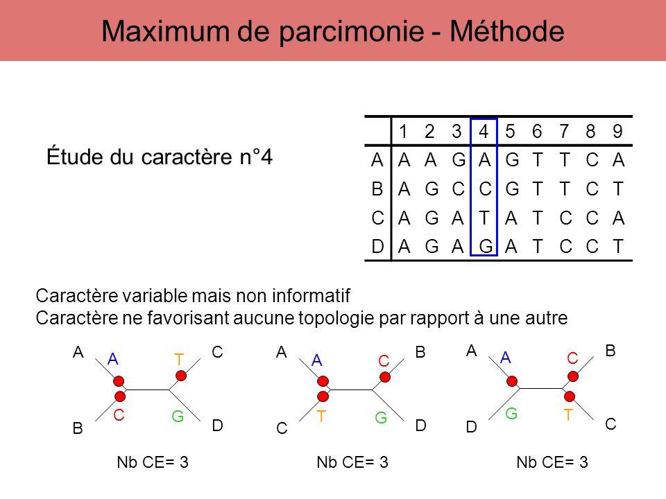 123456789 AAAGAGTTCA BAGCCGTTCT CAGATATCCA DAGAGATCCT A B C D A C B D A D B C Étude du caractère n°4 A C G T A G T C A T G C Caractère variable mais n