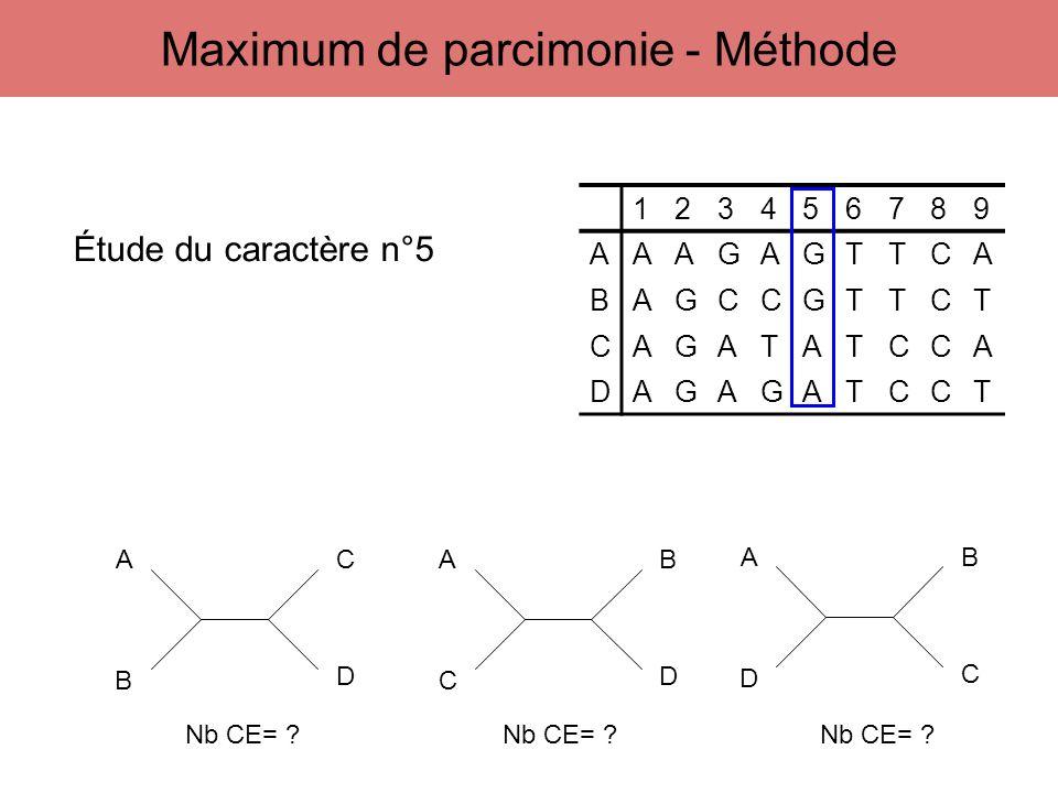 123456789 AAAGAGTTCA BAGCCGTTCT CAGATATCCA DAGAGATCCT A B C D A C B D A D B C Étude du caractère n°5 Nb CE= ? Nb CE= ?Nb CE= ? Maximum de parcimonie -