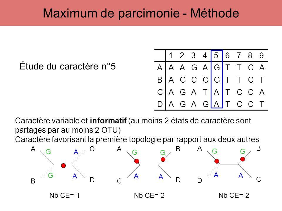 123456789 AAAGAGTTCA BAGCCGTTCT CAGATATCCA DAGAGATCCT A B C D A C B D A D B C Étude du caractère n°5 G G A A G A A G G A A G Caractère variable et inf