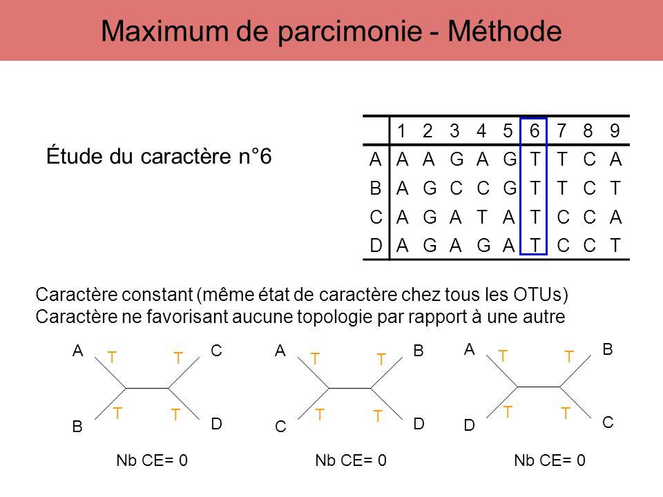 123456789 AAAGAGTTCA BAGCCGTTCT CAGATATCCA DAGAGATCCT A B C D A C B D A D B C Étude du caractère n°6 T T T T T T T T T T T T Caractère constant (même