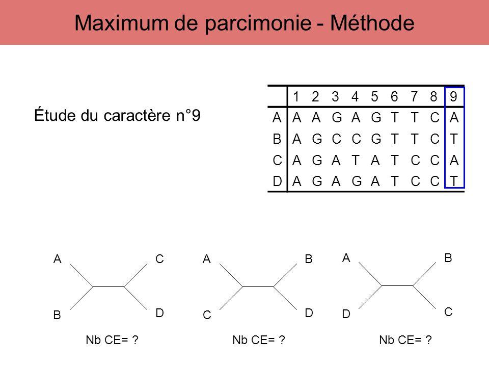 123456789 AAAGAGTTCA BAGCCGTTCT CAGATATCCA DAGAGATCCT A B C D A C B D A D B C Étude du caractère n°9 Nb CE= ? Nb CE= ?Nb CE= ? Maximum de parcimonie -