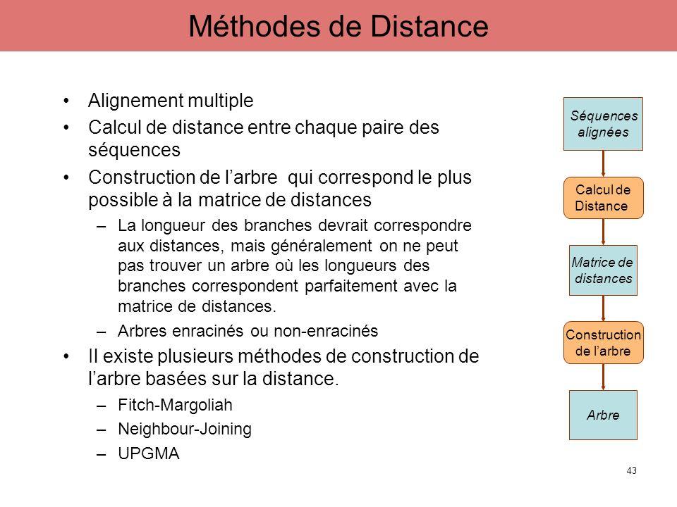 Alignement multiple Calcul de distance entre chaque paire des séquences Construction de larbre qui correspond le plus possible à la matrice de distanc