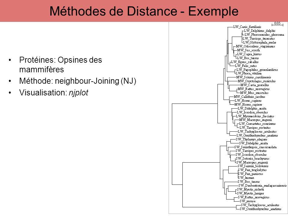 Protéines: Opsines des mammifères Méthode: neighbour-Joining (NJ) Visualisation: njplot 45 Méthodes de Distance - Exemple