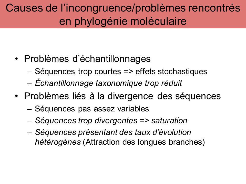 Problèmes déchantillonnages –Séquences trop courtes => effets stochastiques –Échantillonnage taxonomique trop réduit Problèmes liés à la divergence de
