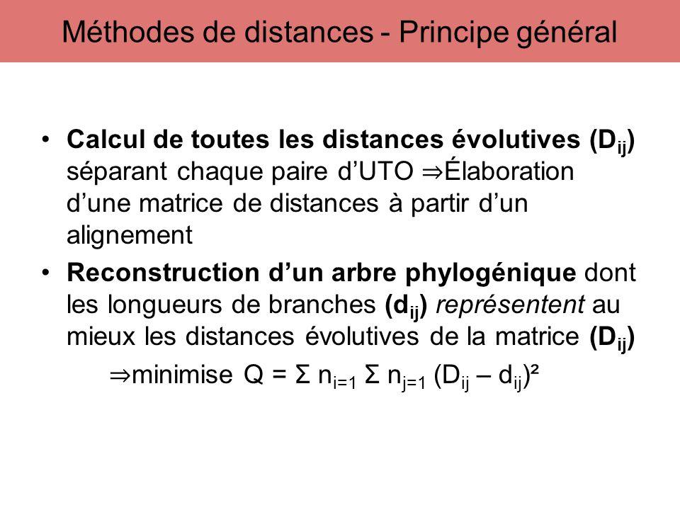 Calcul de toutes les distances évolutives (D ij ) séparant chaque paire dUTO Élaboration dune matrice de distances à partir dun alignement Reconstruct