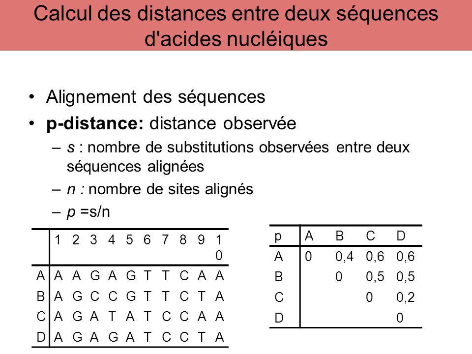 Alignement des séquences p-distance: distance observée –s : nombre de substitutions observées entre deux séquences alignées –n : nombre de sites align