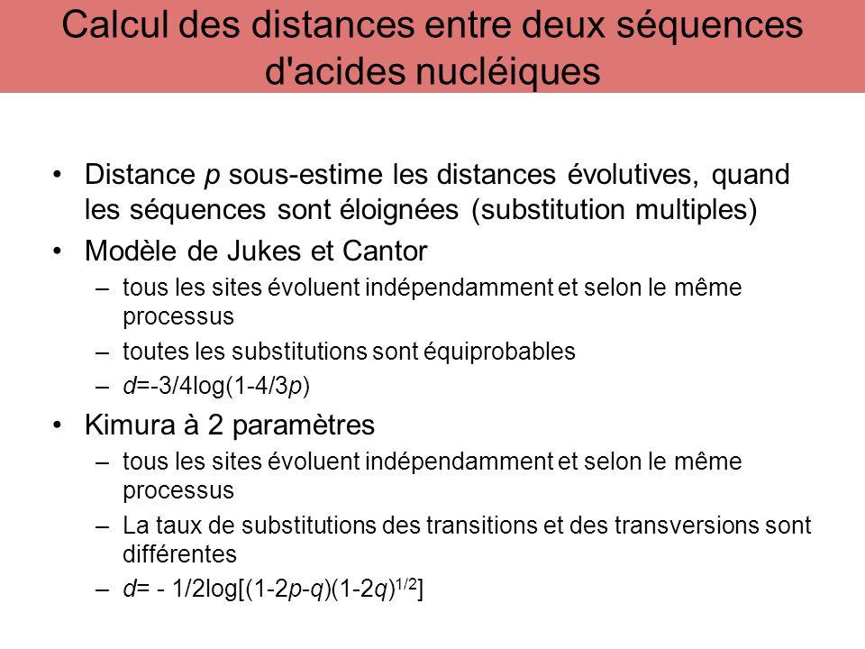 Distance p sous-estime les distances évolutives, quand les séquences sont éloignées (substitution multiples) Modèle de Jukes et Cantor –tous les sites