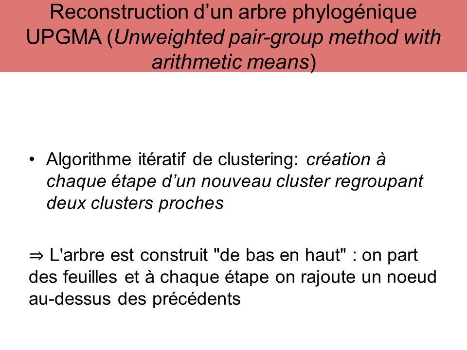 Algorithme itératif de clustering: création à chaque étape dun nouveau cluster regroupant deux clusters proches L'arbre est construit
