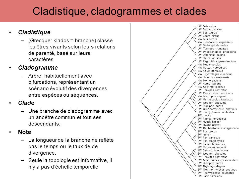 Cladistique –(Grecque: klados = branche) classe les êtres vivants selon leurs relations de parenté, basé sur leurs caractères Cladogramme –Arbre, habi