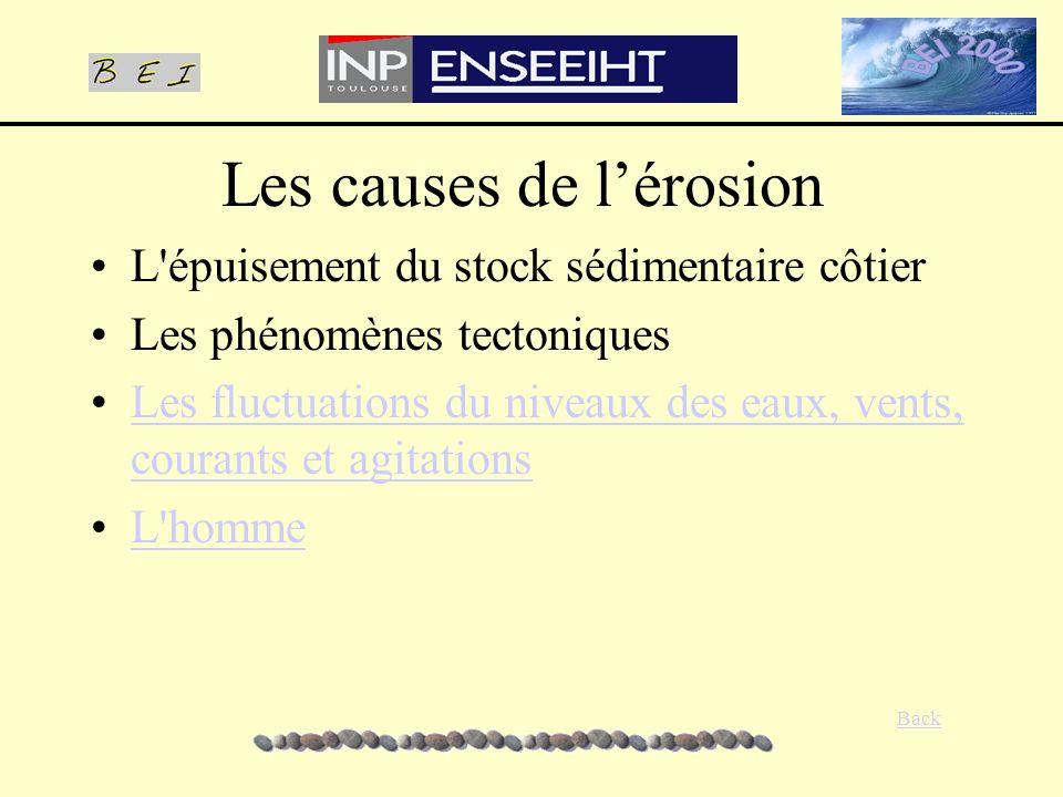Les causes de lérosion L'épuisement du stock sédimentaire côtier Les phénomènes tectoniques Les fluctuations du niveaux des eaux, vents, courants et a