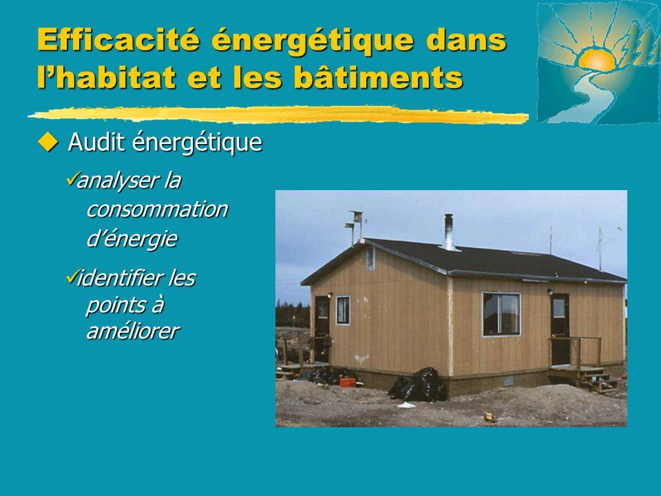u Audit énergétique analyser la consommation dénergie analyser la consommation dénergie identifier les points à améliorer identifier les points à améliorer Efficacité énergétique dans lhabitat et les bâtiments
