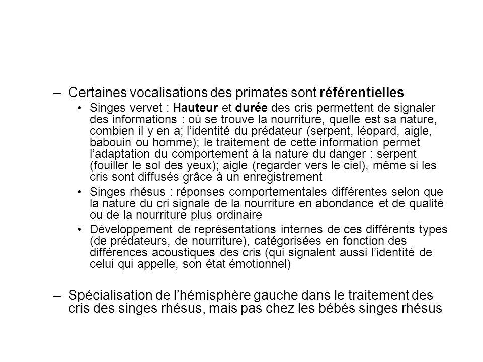 –Certaines vocalisations des primates sont référentielles Singes vervet : Hauteur et durée des cris permettent de signaler des informations : où se tr