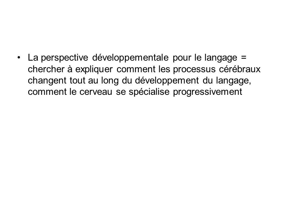 La perspective développementale pour le langage = chercher à expliquer comment les processus cérébraux changent tout au long du développement du langa
