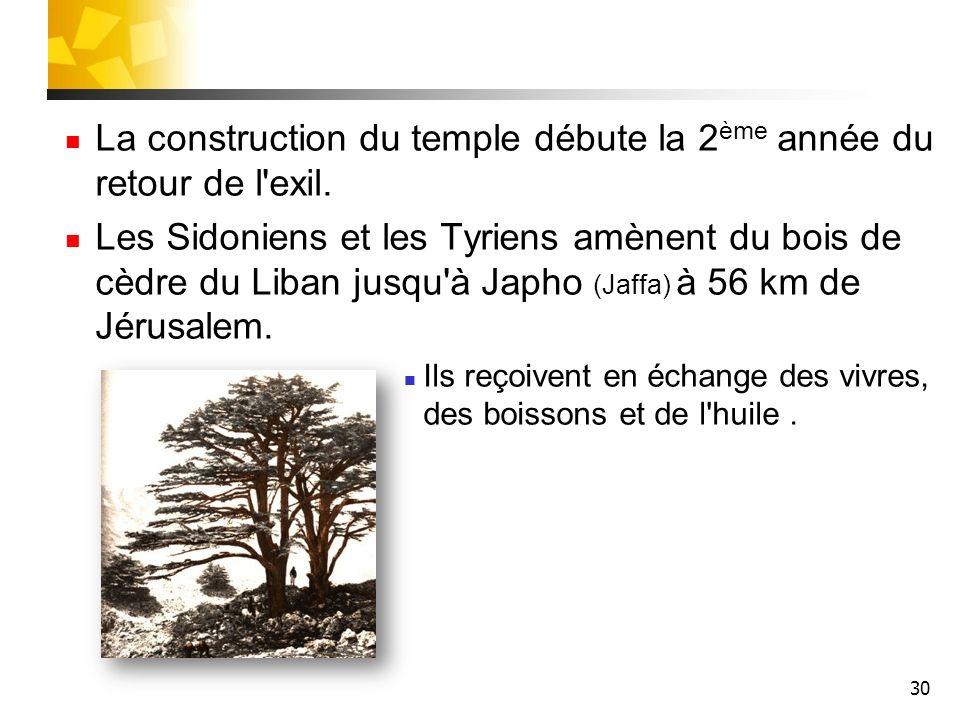 30 La construction du temple débute la 2 ème année du retour de l'exil. Les Sidoniens et les Tyriens amènent du bois de cèdre du Liban jusqu'à Japho (