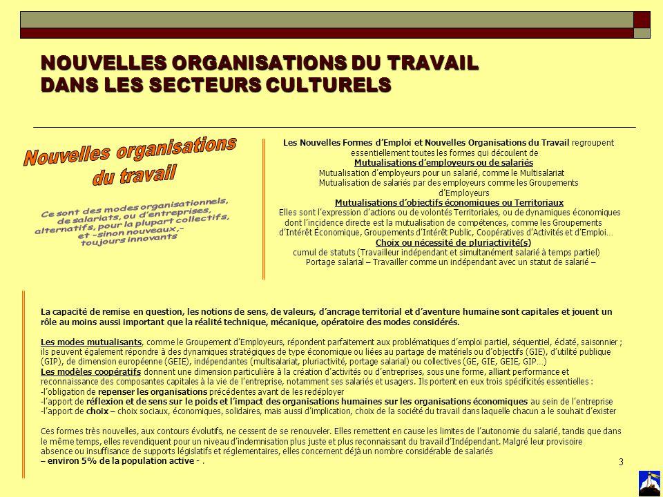 3 NOUVELLES ORGANISATIONS DU TRAVAIL DANS LES SECTEURS CULTURELS Les Nouvelles Formes dEmploi et Nouvelles Organisations du Travail regroupent essenti