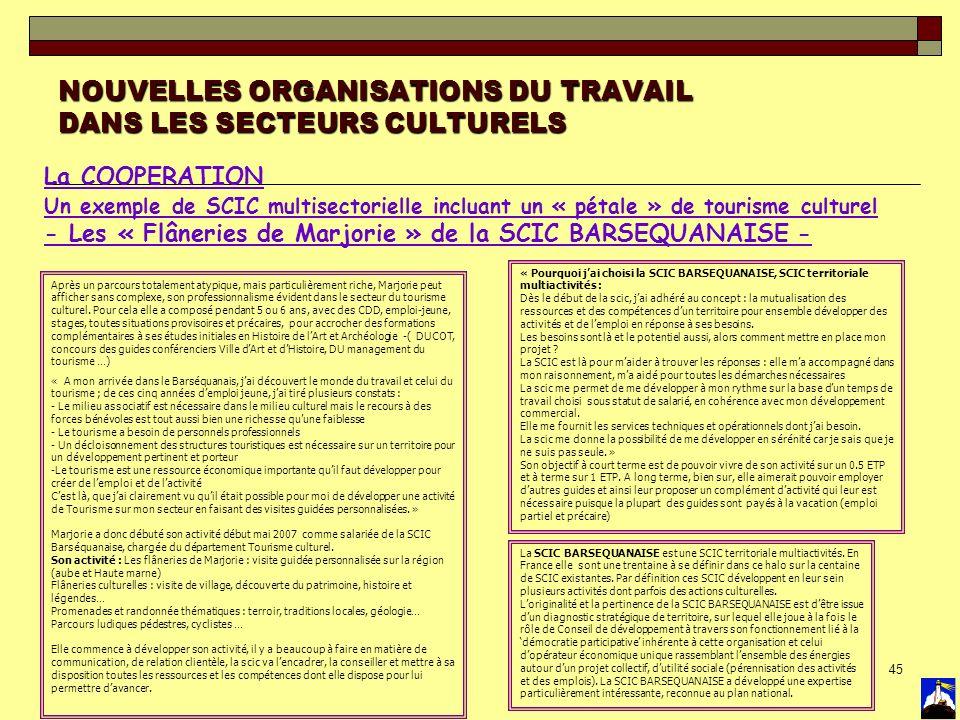 45 NOUVELLES ORGANISATIONS DU TRAVAIL DANS LES SECTEURS CULTURELS La COOPERATION Un exemple de SCIC multisectorielle incluant un « pétale » de tourism