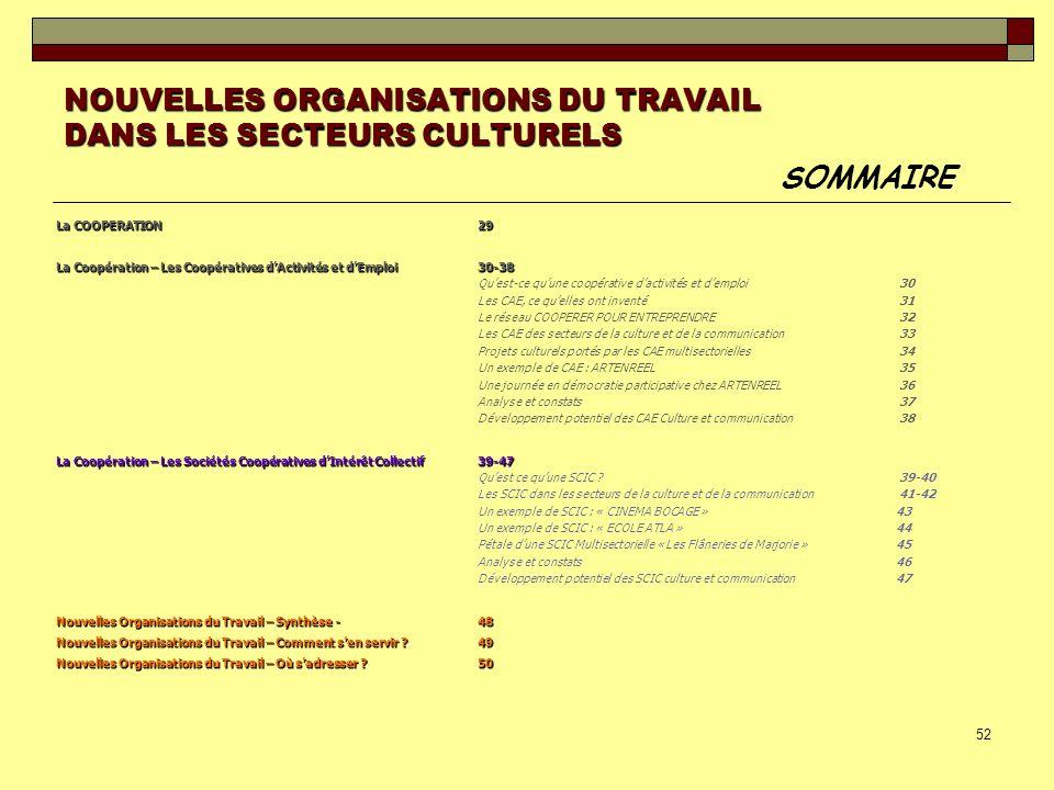 52 NOUVELLES ORGANISATIONS DU TRAVAIL DANS LES SECTEURS CULTURELS SOMMAIRE La COOPERATION29 La Coopération – Les Coopératives dActivités et dEmploi30-